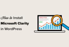 تصویر نحوه نصب Microsoft Clarity Analytics در وردپرس