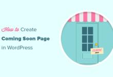 تصویر نحوه ایجاد صفحات زیبا به زودی در وردپرس با SeedProd