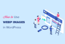 تصویر نحوه استفاده از تصاویر WebP در وردپرس (۳ روش)